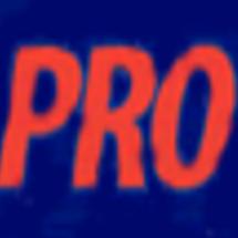 NAPA PRO Link