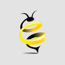 WizeHive Application Processes